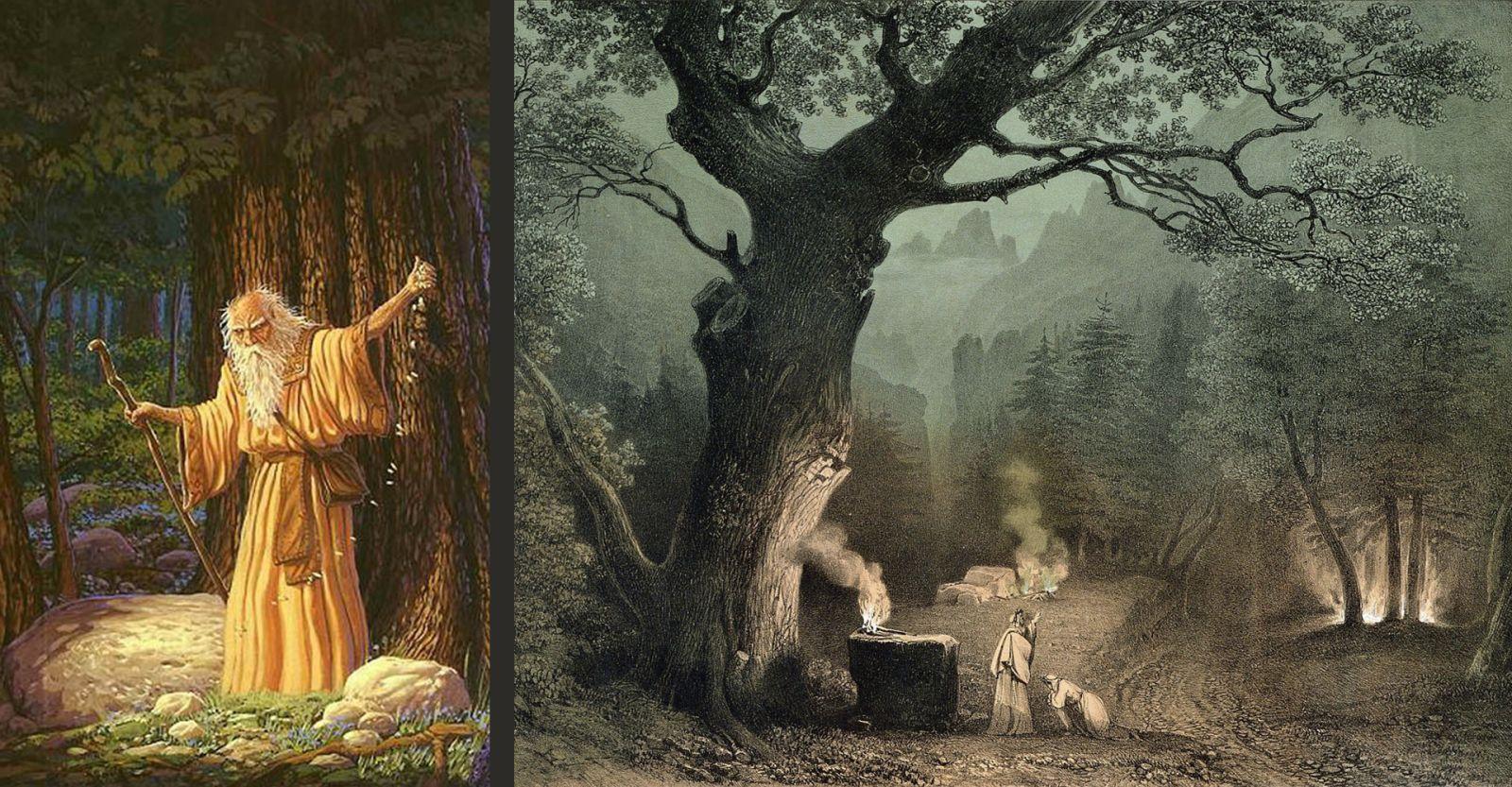 Друиды считались самой уважаемой группой людей в кельтском обществе