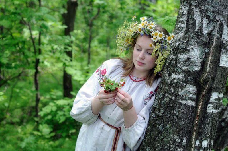 Опытные биоэнергетики советуют найти свое дерево и подзаряжаться около него