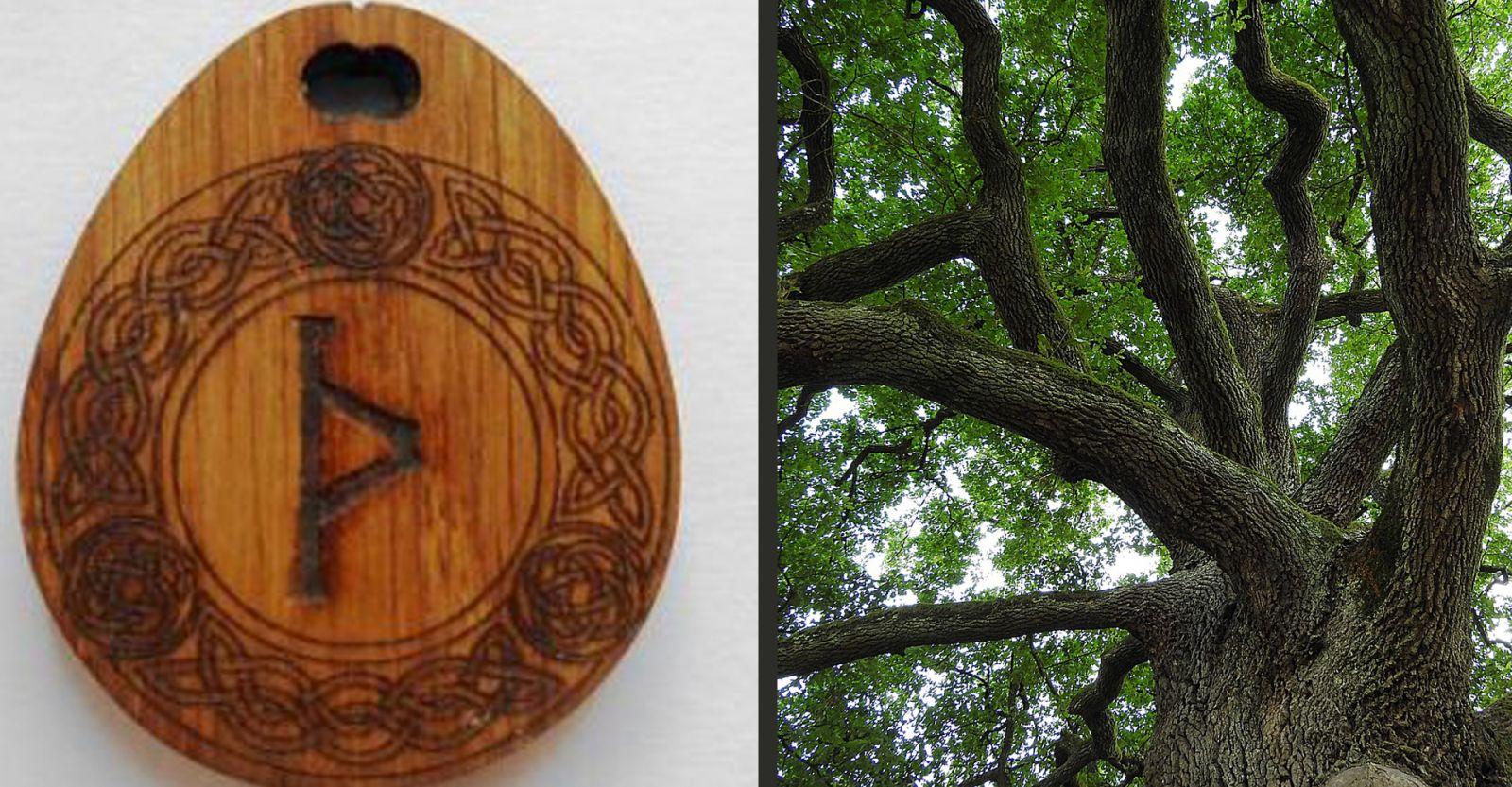 Талисман из дерева дуба с руной Турисаз